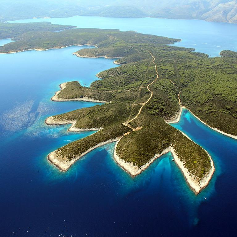 Exclusive sale! For sale agricultural project on island Hvar