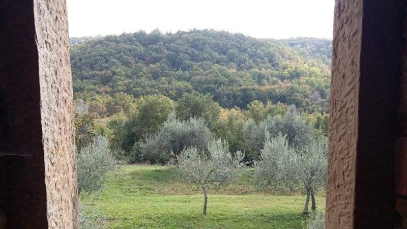 Steinhaus zu verkaufen neben Momjan, Farkaš immo Istrien, 2