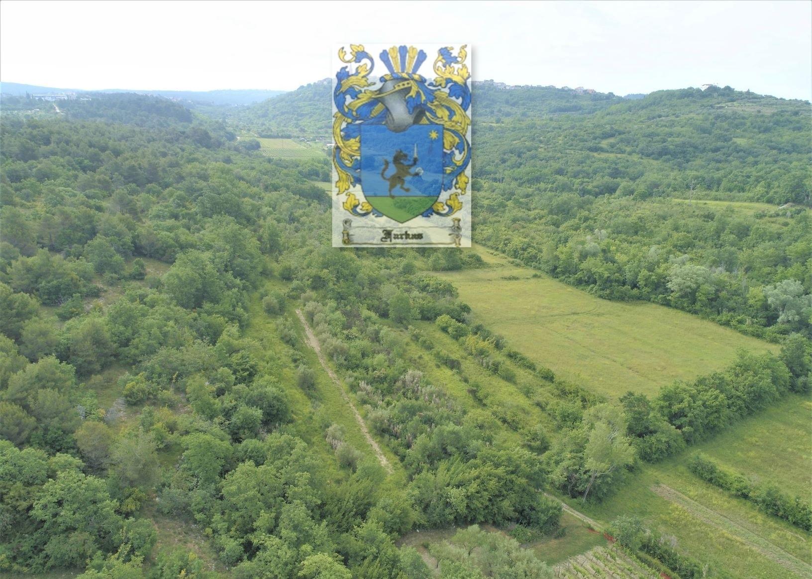 Beautiful estate for sale with beautiful view, Brtonigla surroundings