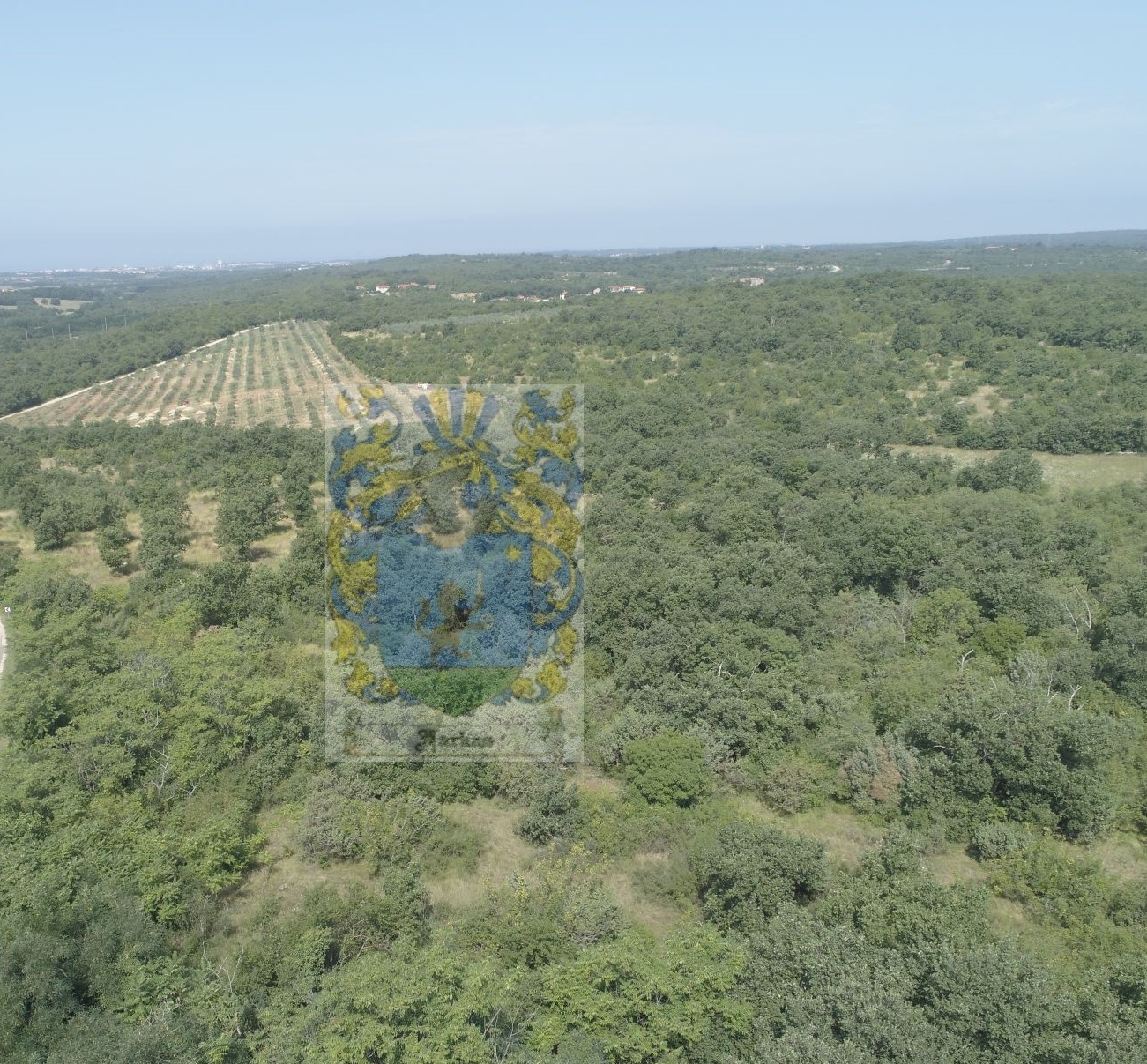 Exclusive sale! Land for sale in a small village near Buje